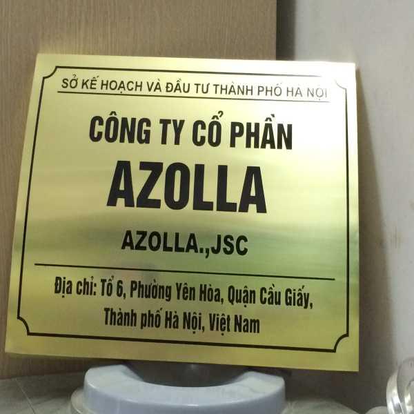 Làm biển công ty Azolla