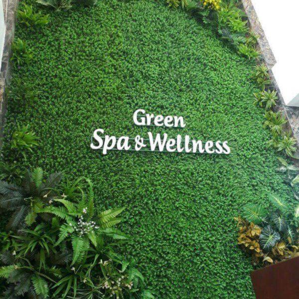 Biển tường cỏ Green Spa